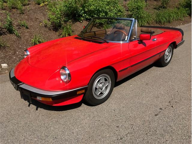 Picture of '83 Spider - QGO0
