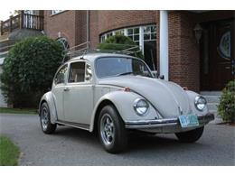 Picture of '68 Beetle - QGQN