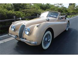 Picture of '54 XK120 - QDH6