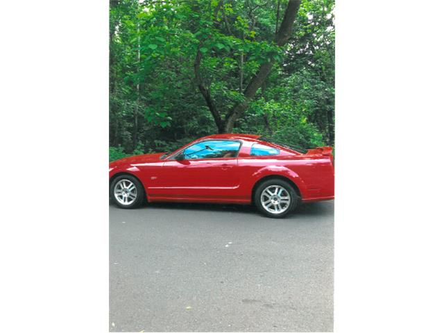 Picture of '05 Mustang GT - QH44
