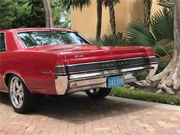 Picture of Classic 1965 GTO - $55,900.00 Offered by a Private Seller - QH84