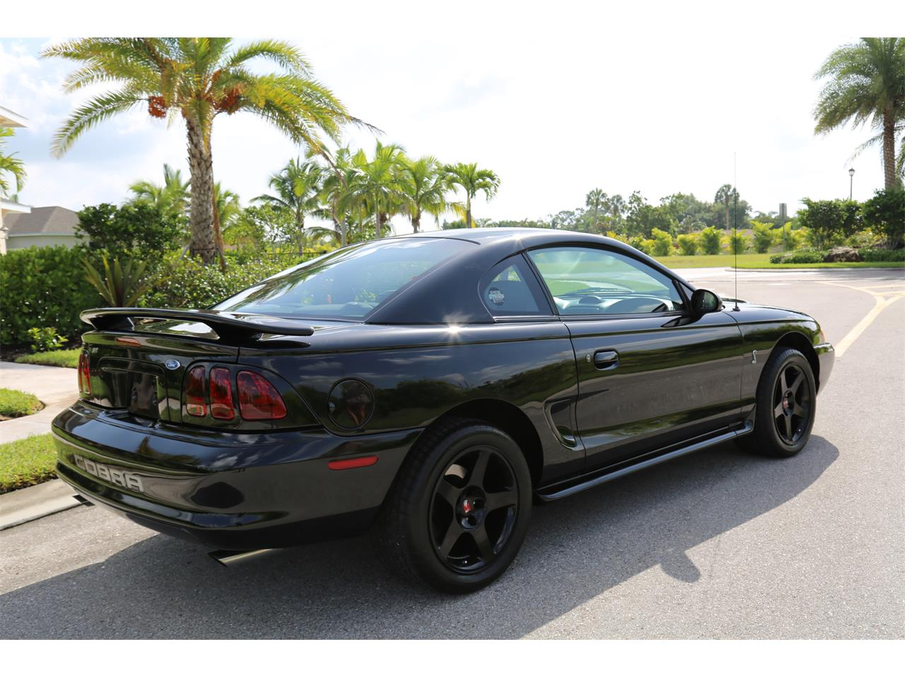 Large Picture of '96 Mustang II Cobra - QI17