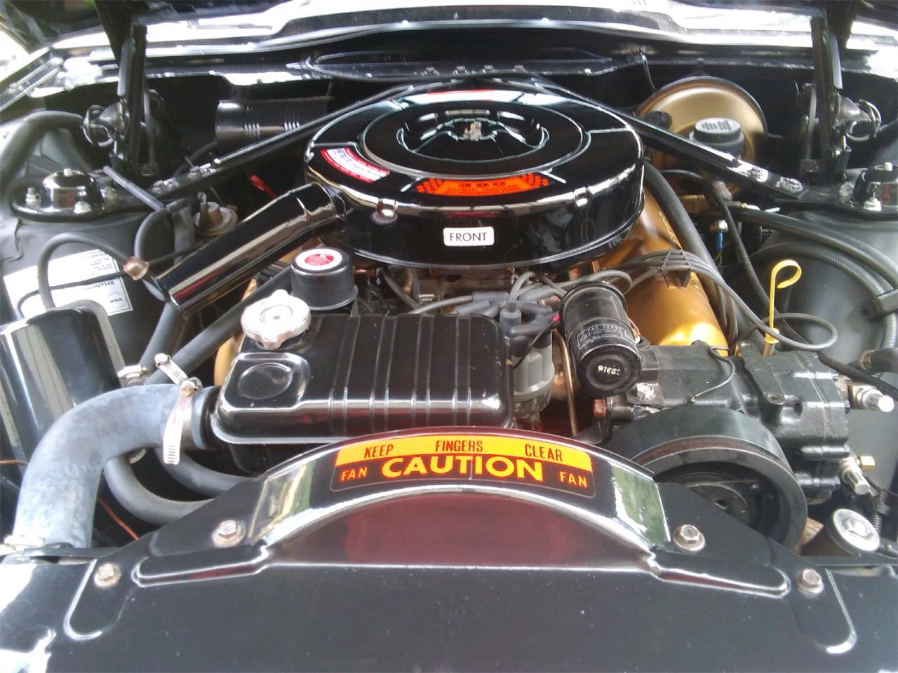 Large Picture of '64 Thunderbird - QI21