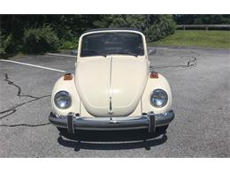 Picture of '77 Beetle - QI72