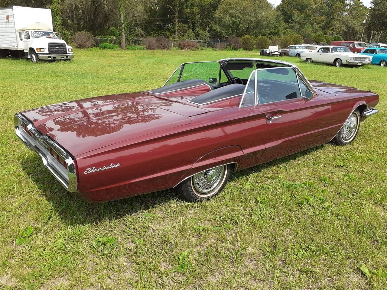 Large Picture of '66 Thunderbird - QIAO