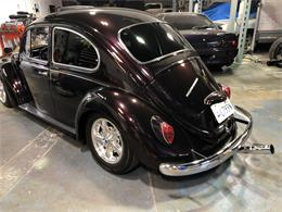 Picture of '62 Beetle - QIC0