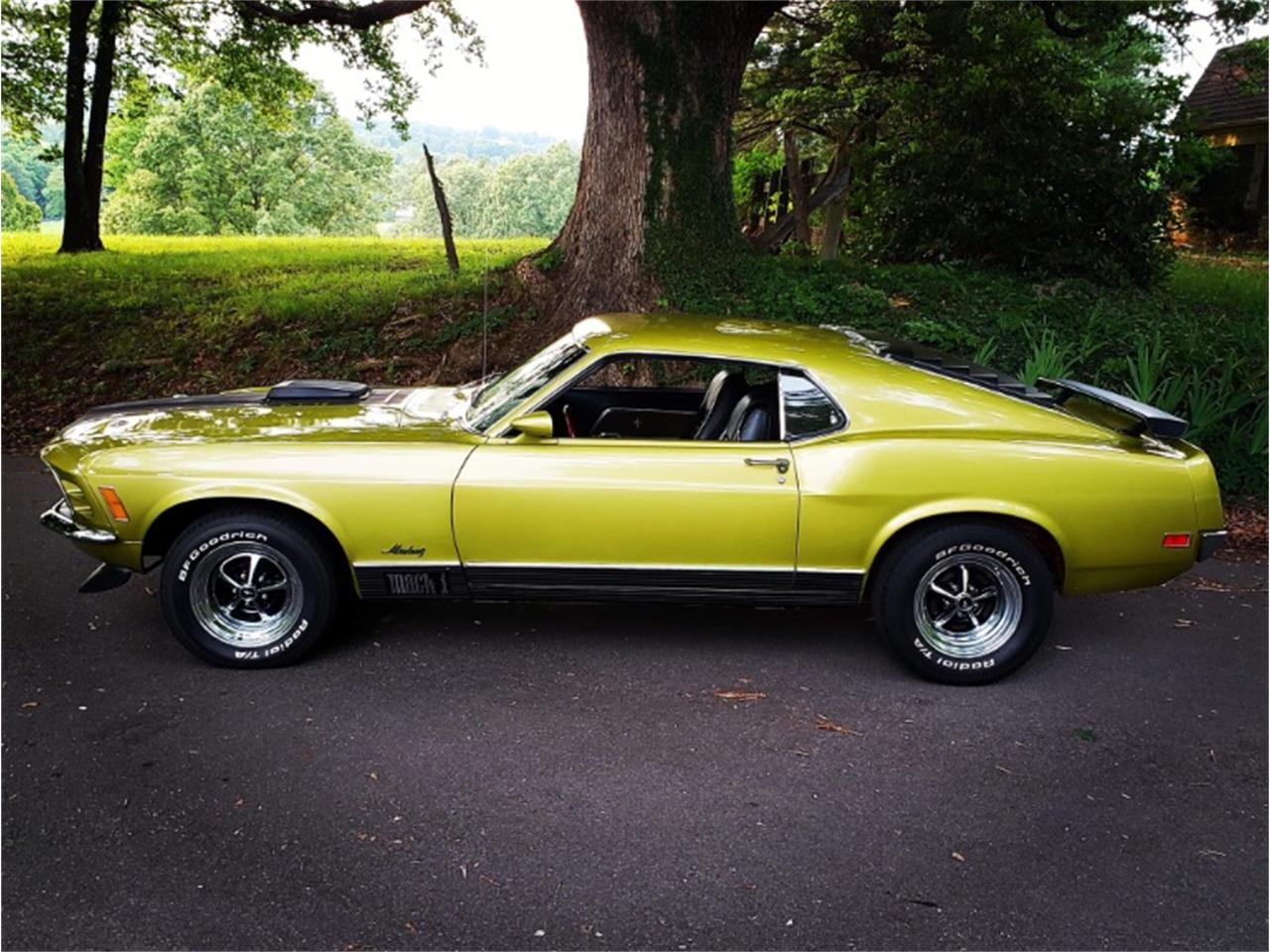 Large Picture of Classic 1970 Mustang - QIDR