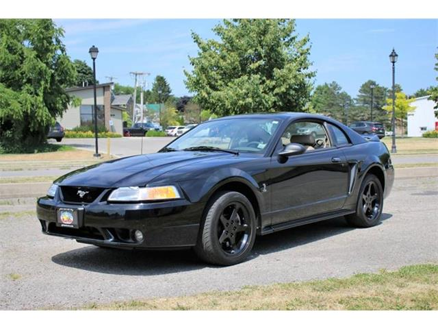 Picture of '99 Mustang SVT Cobra - QIFY