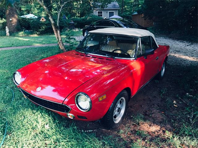 Picture of '81 Spider - QIIY