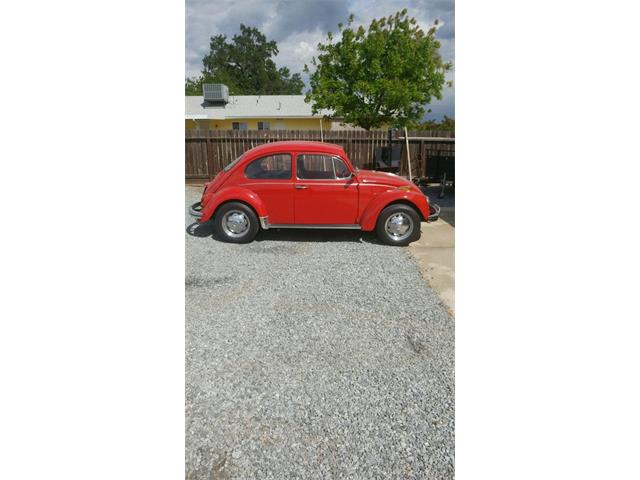 Picture of 1970 Beetle Offered by a Private Seller - QDN0