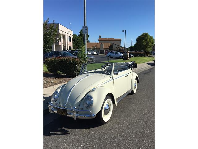 Picture of '63 Beetle - QITX