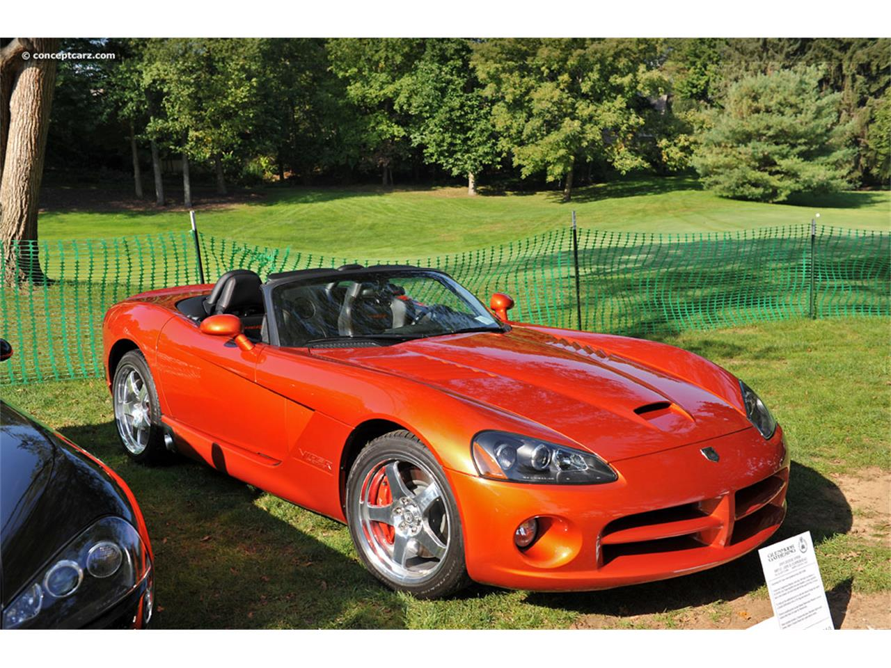 Large Picture of '05 Viper - QIZW
