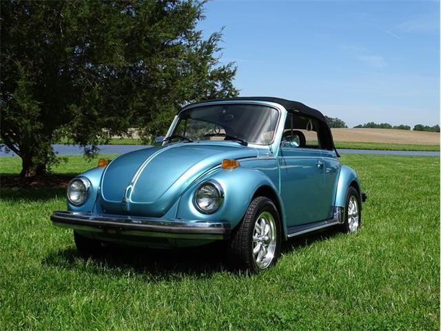 Picture of '79 Beetle - QJG4