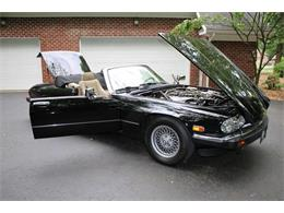 Picture of 1991 XJ located in Hilton New York - $17,995.00 - QJNK