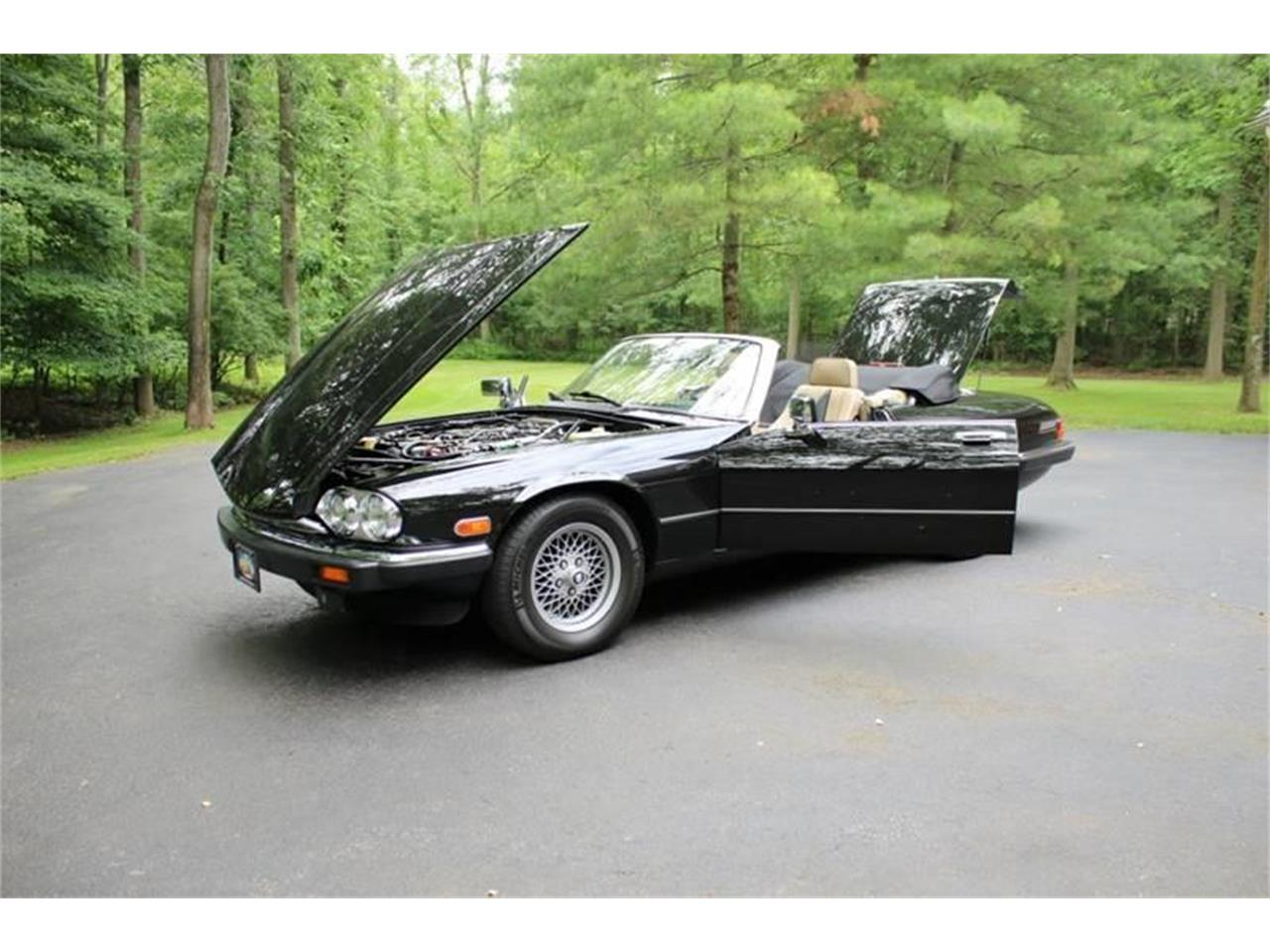 Large Picture of '91 Jaguar XJ located in Hilton New York - $17,995.00 - QJNK