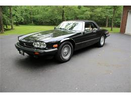 Picture of 1991 Jaguar XJ located in Hilton New York Offered by Great Lakes Classic Cars - QJNK