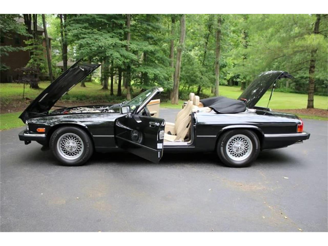 Large Picture of 1991 XJ Offered by Great Lakes Classic Cars - QJNK