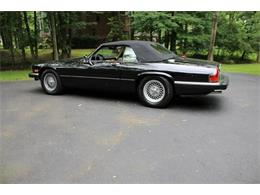 Picture of '91 Jaguar XJ located in Hilton New York Offered by Great Lakes Classic Cars - QJNK
