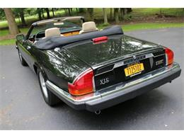 Picture of '91 Jaguar XJ located in Hilton New York - $17,995.00 Offered by Great Lakes Classic Cars - QJNK