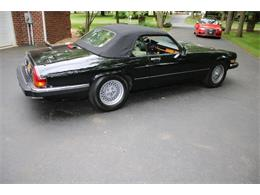 Picture of 1991 Jaguar XJ located in Hilton New York - QJNK