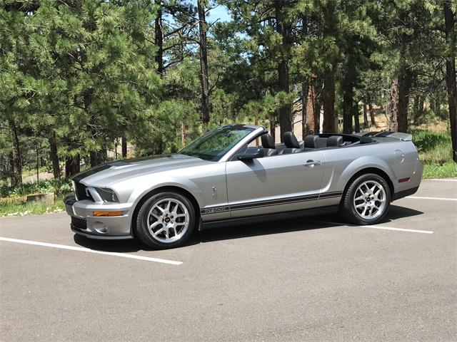 Picture of '08 GT500 - QJQE
