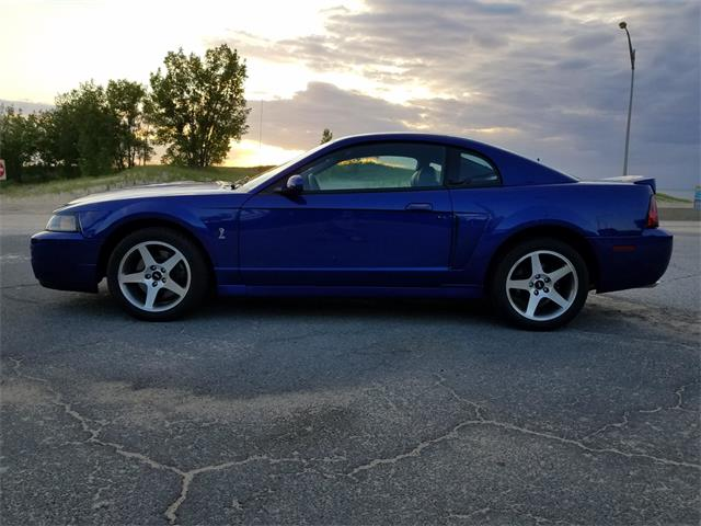 Picture of 2003 Ford Mustang SVT Cobra located in Michigan City Indiana Offered by  - QJVB