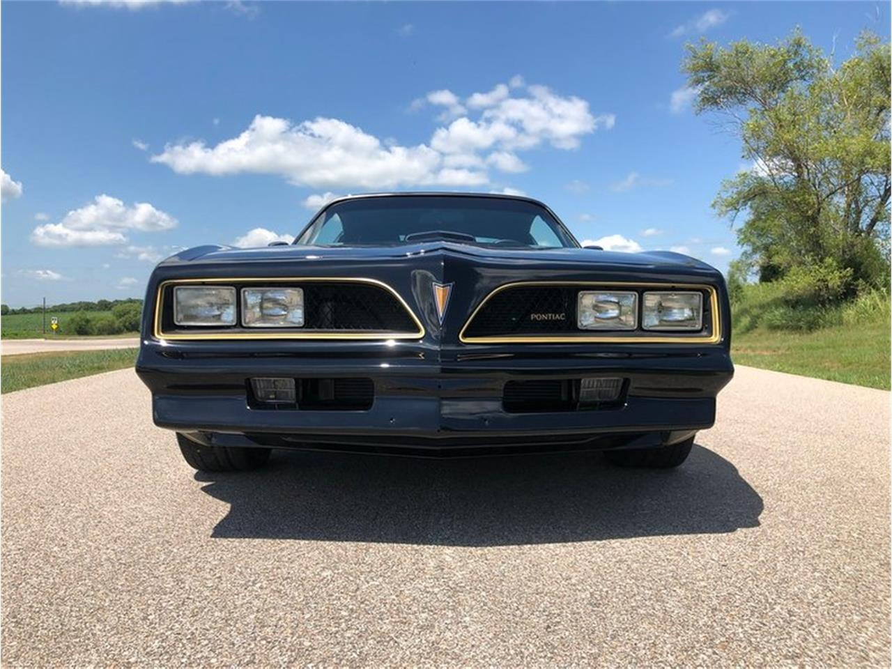 Large Picture of '77 Pontiac Firebird Trans Am Offered by Restore a Muscle Car, LLC - QJWS