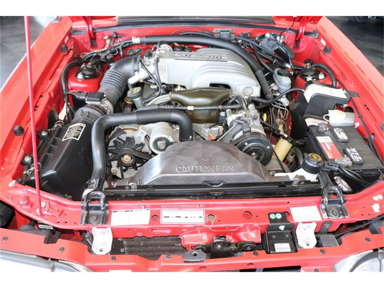 Large Picture of '92 Mustang - QK5K