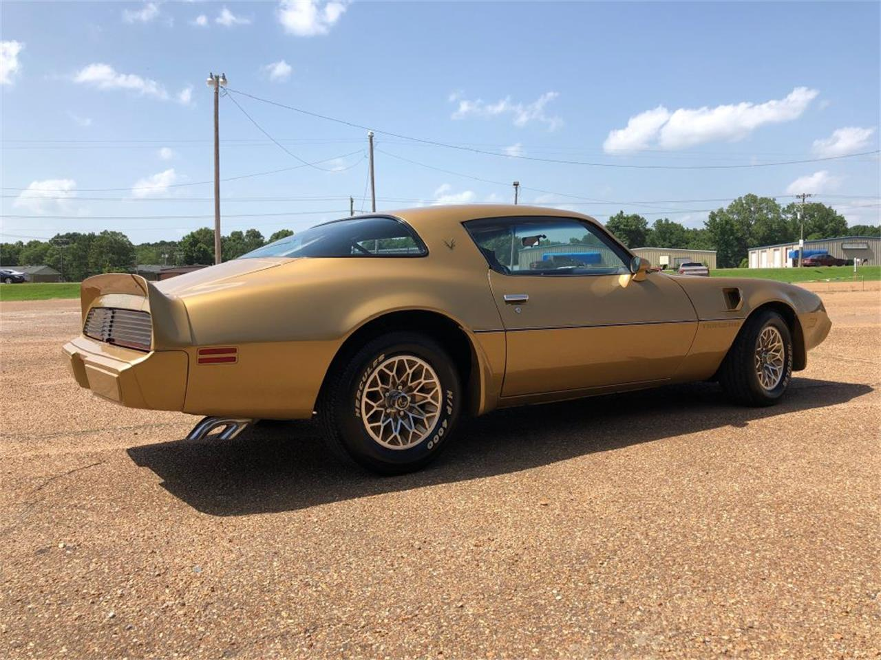 Large Picture of '79 Firebird - QLNF