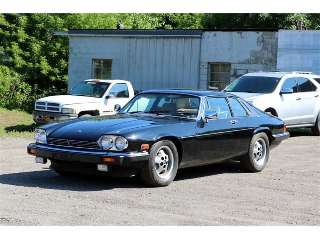 Picture of '83 XJS - QLOD