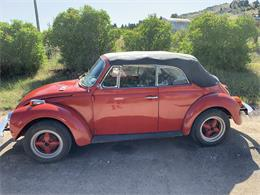 Picture of '75 Beetle - QLPZ