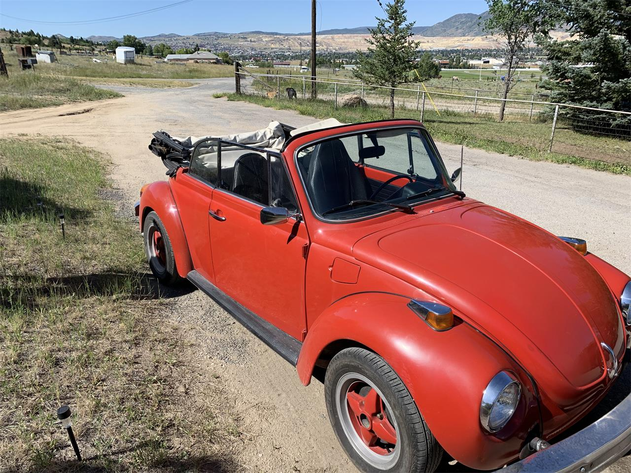 Large Picture of '75 Beetle - QLPZ