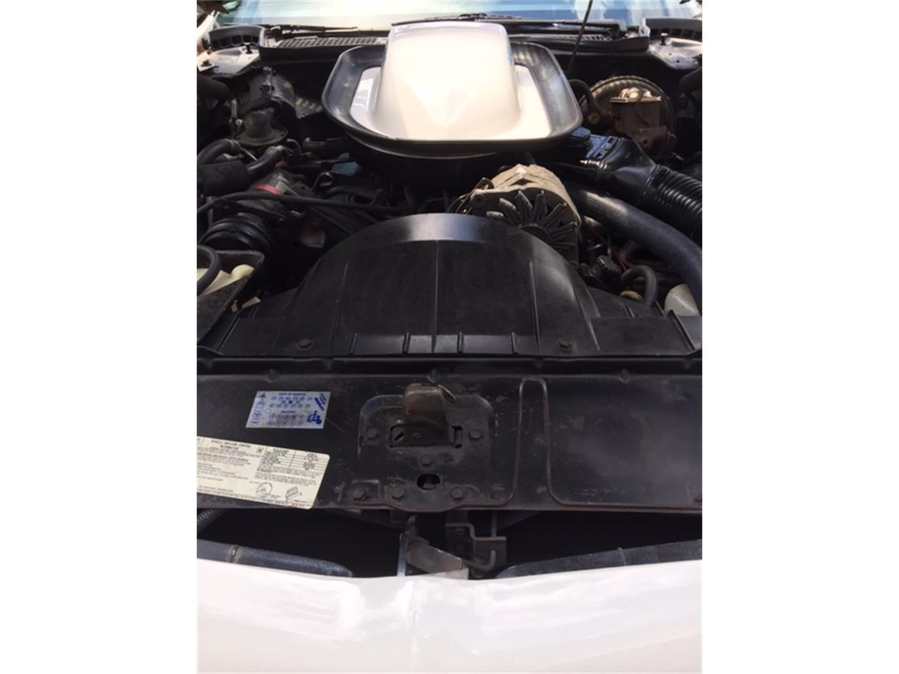 Large Picture of 1975 Pontiac Firebird Trans Am located in Franklinville New Jersey - $24,500.00 Offered by a Private Seller - QKWB