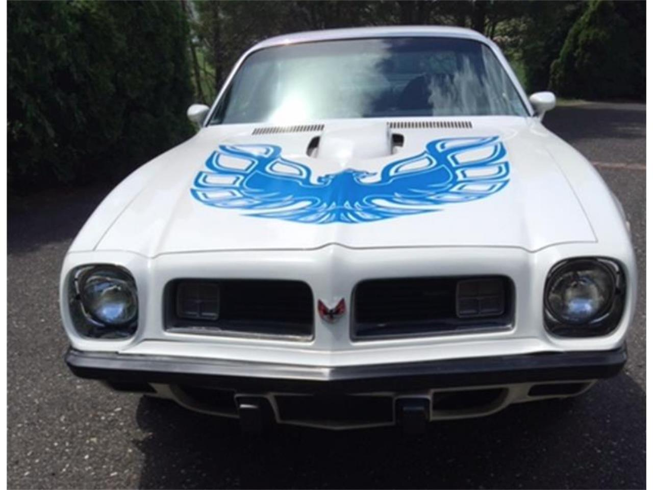 Large Picture of 1975 Firebird Trans Am located in New Jersey - QKWB