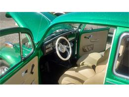 Picture of Classic 1969 Beetle located in Toledo Washington Offered by a Private Seller - QLZV