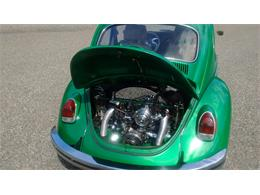 Picture of Classic '69 Beetle - $16,500.00 - QLZV