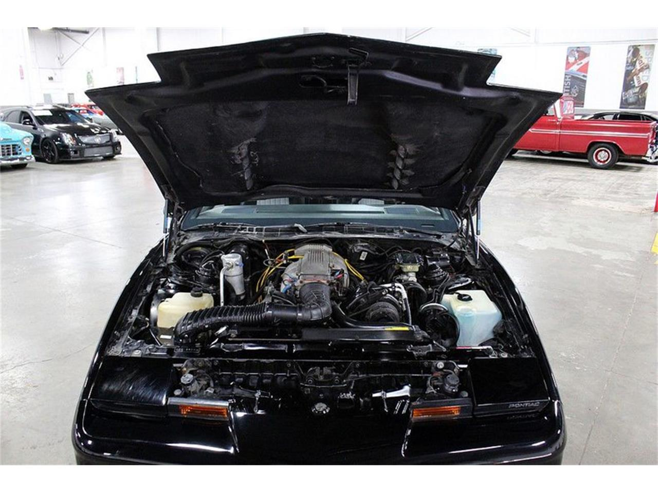 Large Picture of '86 Firebird Trans Am - QM01