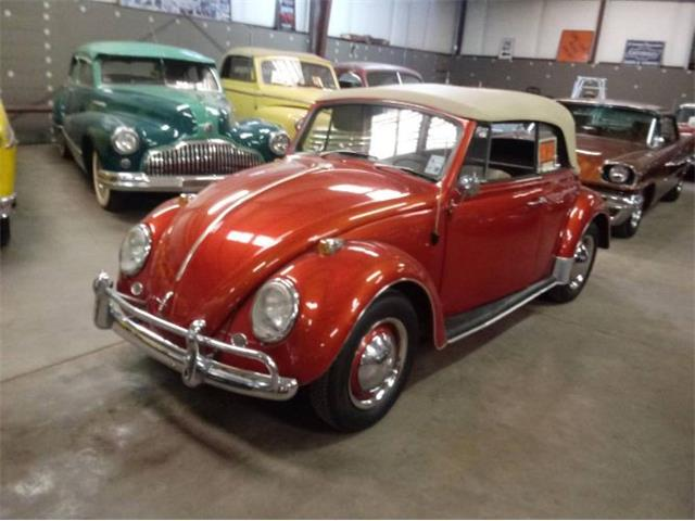 Picture of '66 Beetle - QM64
