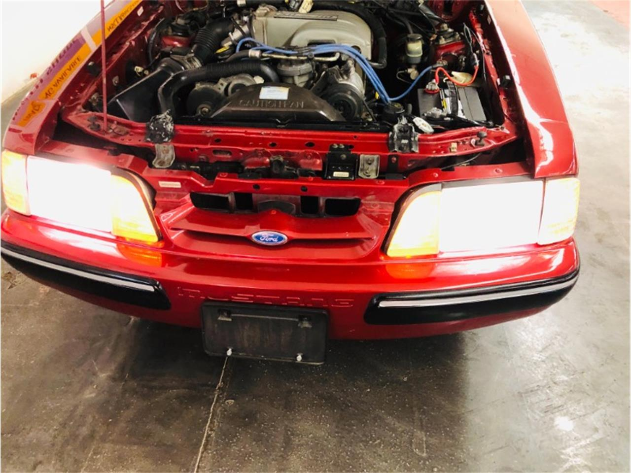 Large Picture of '91 Mustang - QMLU