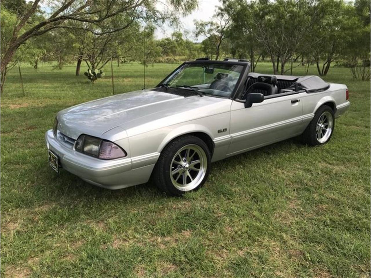 Large Picture of '93 Mustang - QKZ8