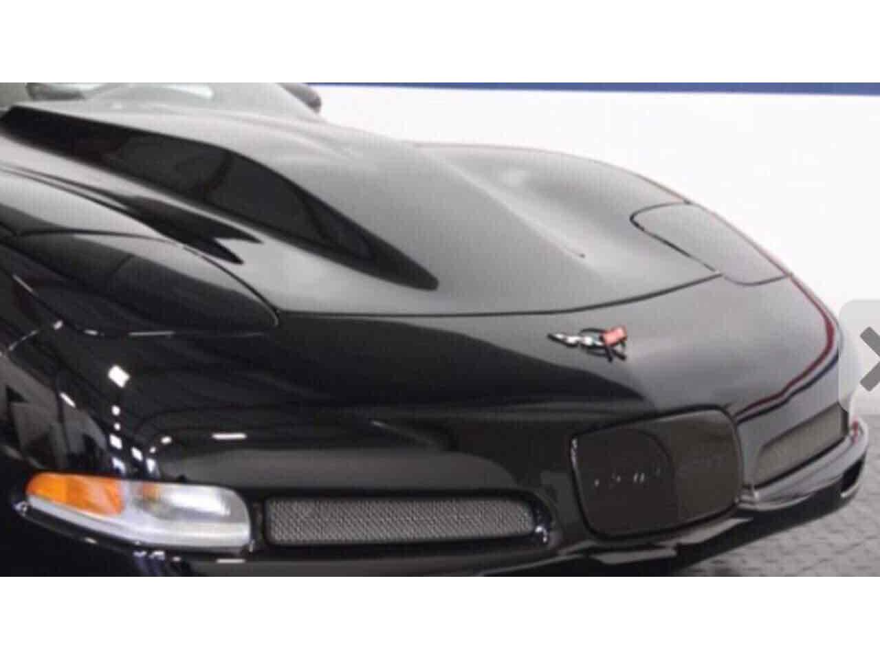 Large Picture of '04 Corvette - QMVD