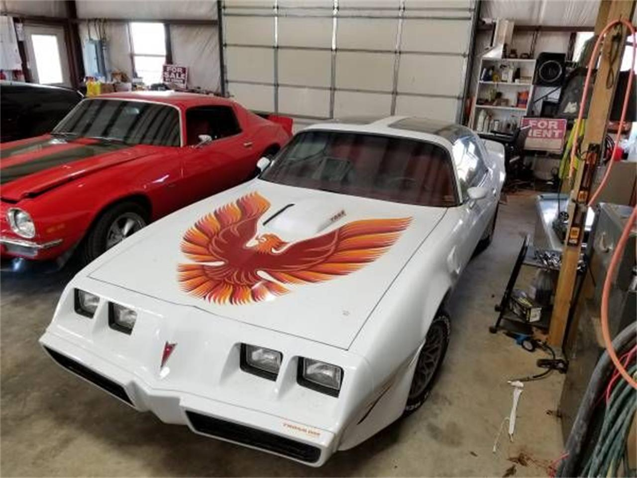 Large Picture of '79 Firebird Trans Am - QNHC