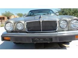 Picture of '86 Jaguar XJ6 located in Tucson AZ - Arizona - $7,500.00 Offered by Old Iron AZ LLC - QNNV
