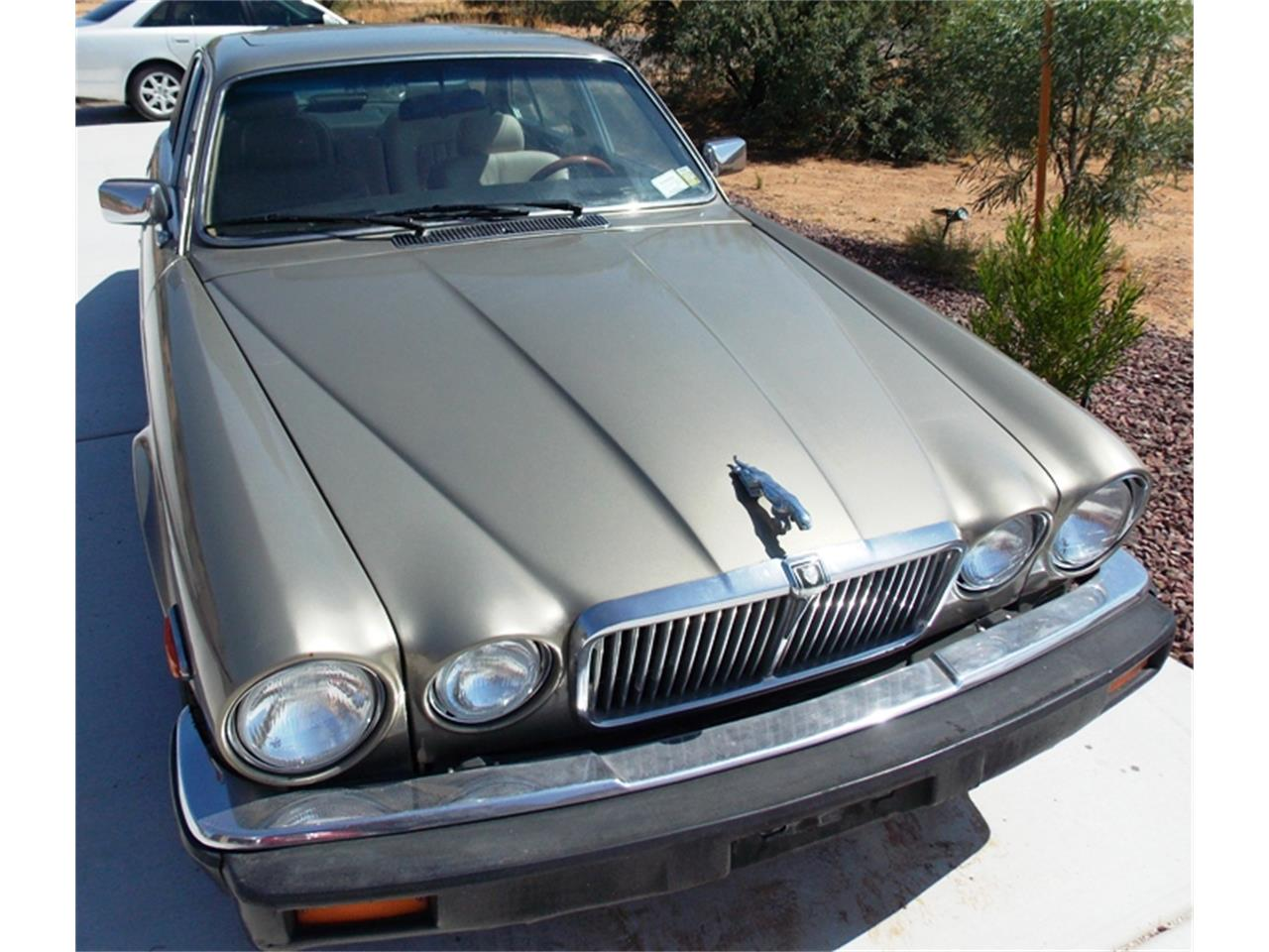 Large Picture of 1986 Jaguar XJ6 - $7,500.00 Offered by Old Iron AZ LLC - QNNV