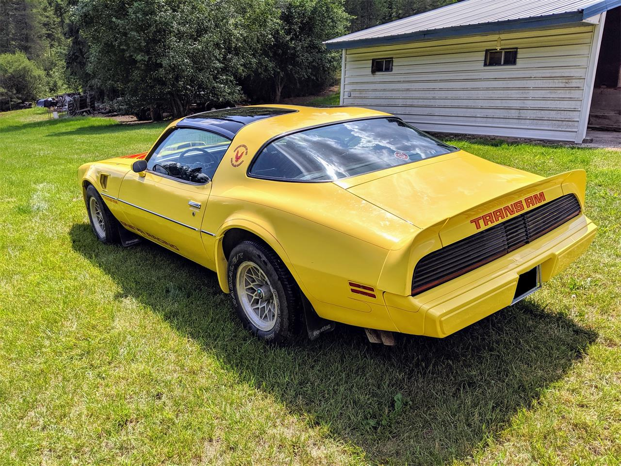 Large Picture of '79 Firebird Trans Am - QL5W