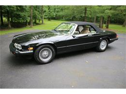 Picture of '91 XJS - QOOM