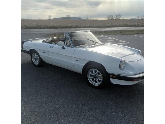Picture of '89 Spider - QOQA