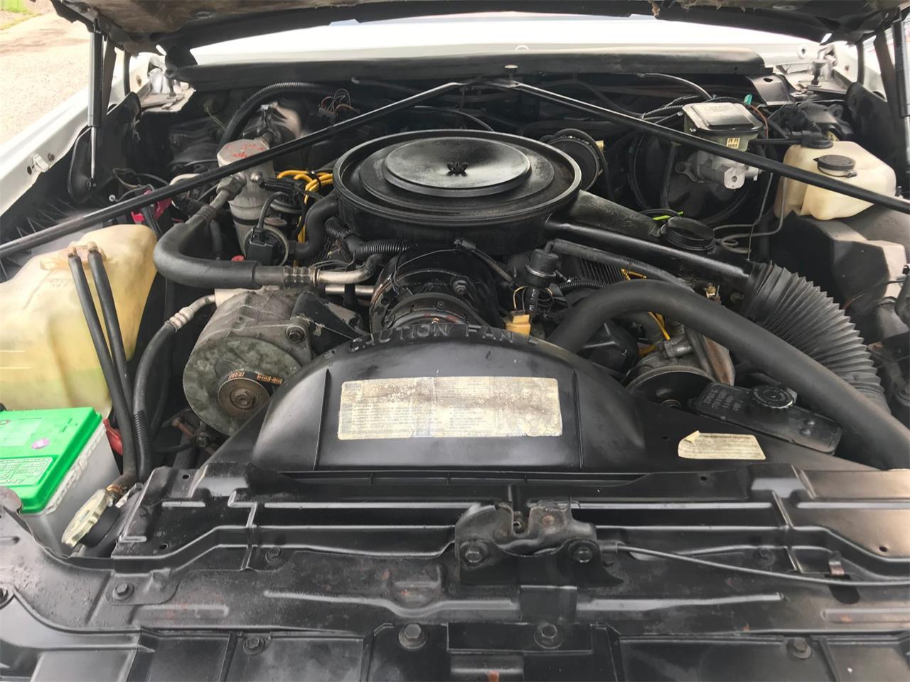 Large Picture of '85 Eldorado Biarritz - QP0L