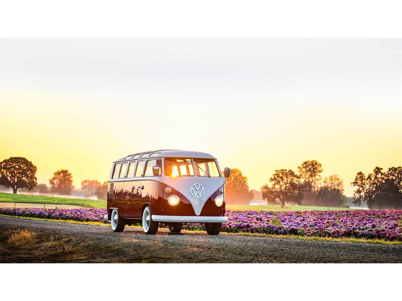 Large Picture of '66 Volkswagen Bus located in Oregon - QP3E