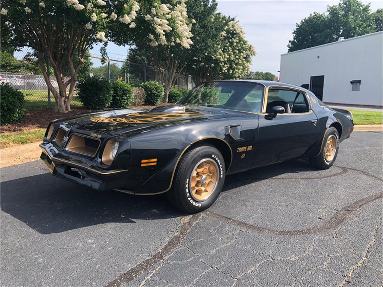 Large Picture of '76 Firebird Trans Am located in Arizona - QPBT